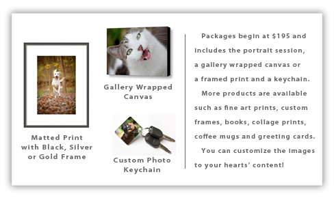 Pet Photography product sample